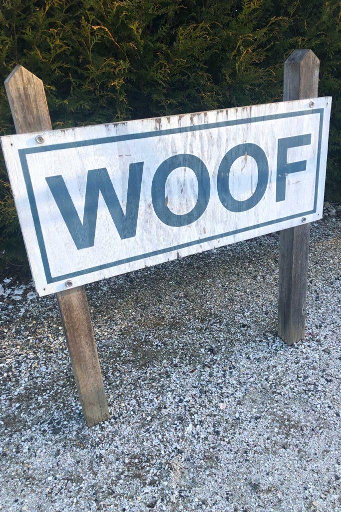 Seabrook Washington dog park