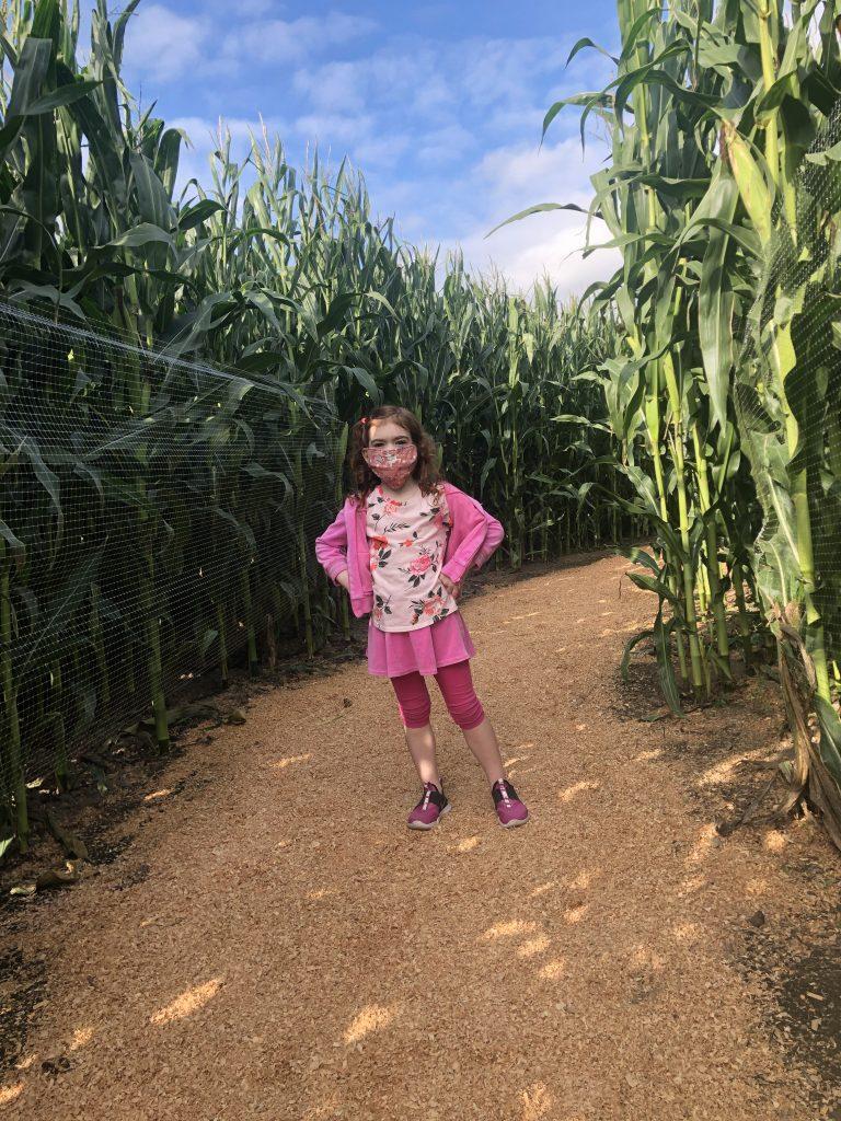 Portland pumpkin patch corn maze