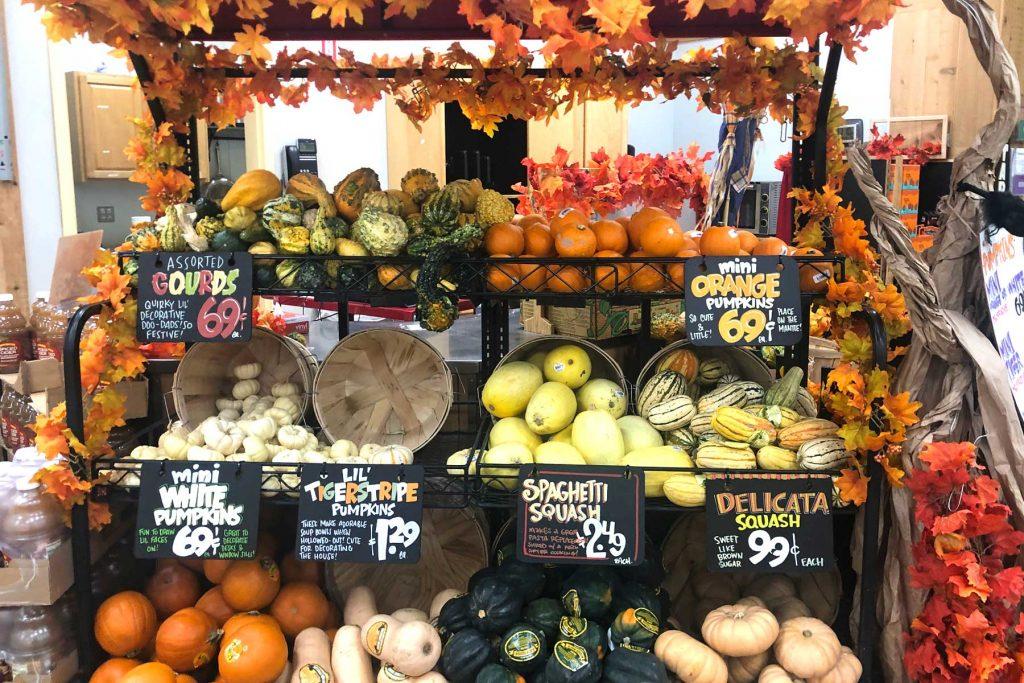 trader joe's gourds